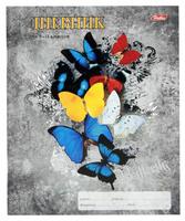 """Дневник школьный """"Butterfly"""" (для ст. классов, 48 л.)"""